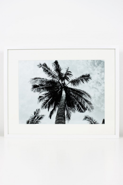 DIY Art: Creating Your Own Framed Tropical Prints - Printable Wall Art, IKEA, Frames, Prints, Printables, Inexpensive, Custom, Art, Palm Trees, Palms, Make Your Own Art, Print Your Own Art, Framing Printable Art, Gold Leaf Vases, White and Gold, Black and White, Royalty-Free